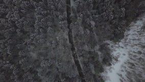 Vista aerea dall'automobile del fuco di volo che passa la strada di inverno attraverso la foresta nevosa video d archivio