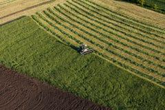 Vista aerea dei campi del raccolto con l'associazione Immagine Stock