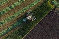 Vista aerea dei campi del raccolto con l'associazione Fotografia Stock