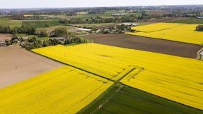 Vista aerea dei campi di colza, Francia immagini stock