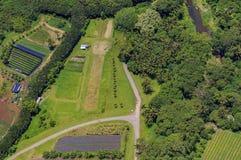 Vista aerea dei campi e delle palme in Oahu Hawai Fotografia Stock