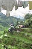 Vista aerea dei terrazzi di fama mondiale del riso, Banaue Immagini Stock
