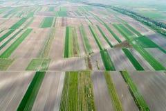Vista aerea dei terreni coltivabili immagini stock libere da diritti