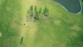 Vista aerea del campo da golf stock footage