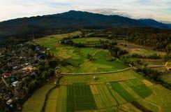 Vista aerea del campo di agricoltura del sorn del maehong del pe dello zutong del nord Fotografia Stock Libera da Diritti