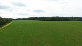 Vista aerea del campo e del lago verdi Sorvolare il campo con erba verde e poco lago Rilevamento aereo della foresta vicino Immagine Stock