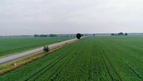 Vista aerea del campo archivi video