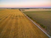 Vista aerea del campo raccolto e del pascolo verde al tramonto in Au Fotografie Stock