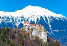 Vista aerea del castello medievale costruito sulla roccia, Slovenia Fotografia Stock