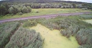 Vista aerea del fuco della pista del treno di Cane Reed Field Wooden Bridge And vicino alla palude video d archivio