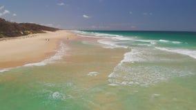 Vista aerea del fuco della spiaggia nel lago Currimundi, Caloundra, costa del sole, Queensland, Australia video d archivio