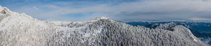 Vista aerea del fuco del legno innevato dopo precipitazioni nevose Alpi italiane Immagine Stock