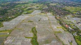 Vista aerea del giacimento del riso fotografia stock libera da diritti