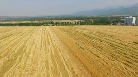 Vista aerea del giacimento di grano, Xi'an, Cina archivi video