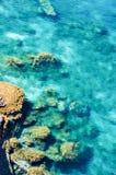 Vista aerea del litorale di mare Immagine Stock Libera da Diritti