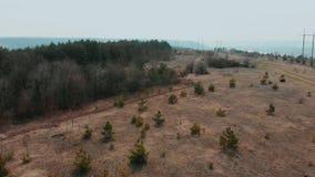 Vista aerea del metraggio del fuco: Volo sopra le colline di autunno con la luce morbida della foresta Erba sbiadita giallo e pic archivi video