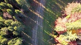 Vista aerea del movimento dei veicoli su una strada della montagna carpathians Vista superiore archivi video
