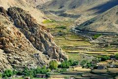 Vista aerea del paesaggio agricolo del ladakh verde Immagine Stock