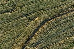 Vista aerea del paesaggio di mattina dei campi del raccolto Fotografia Stock