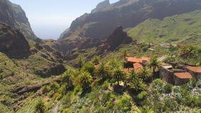 Vista aerea del paesino di montagna in canyon di Masca da sopra su Tenerife, Canarias, Spagna video d archivio