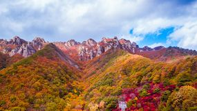 Vista aerea del parco provinciale di Daedunsan con le foglie variopinte dentro immagini stock