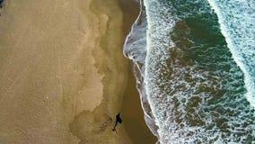 Vista aerea del surfista che cammina sulla spiaggia stock footage