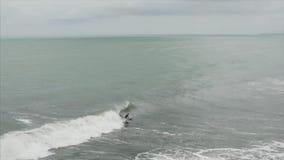Vista aerea del surfista che guida oceano Wave blu alla rottura tropicale perfetta del punto Sport di estremo di estate del fuco stock footage