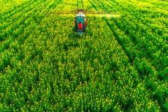 Vista aerea del trattore agricolo che ara e che spruzza sul campo fotografia stock