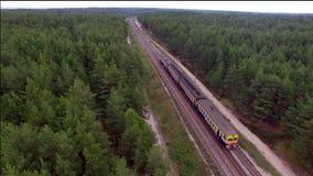 Vista aerea del treno sopra la ferrovia nella foresta archivi video