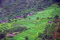 Vista aerea del villaggio cinese generico Fotografie Stock Libere da Diritti