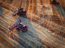 Vista aerea dell'associazione sul giacimento di grano del raccolto Fotografie Stock Libere da Diritti
