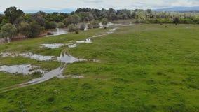 Vista aerea dell'inondazione rurale dell'azienda agricola che caratterizza la casa dell'azienda agricola, sui campi sommersi asci archivi video