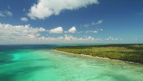 Vista aerea dell'isola di Saona, Repubblica dominicana Paesaggio tropicale con le palme ed il mare caraibico video d archivio
