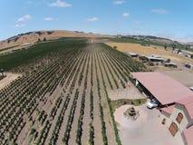 Vista aerea della cantina di California Fotografie Stock