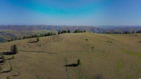Vista aerea della casa rurale e natura delle montagne carpatiche video d archivio