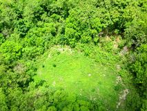 Vista aerea della foresta Fotografia Stock Libera da Diritti