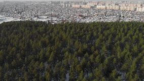 Vista aerea della foresta e della città di inverno archivi video