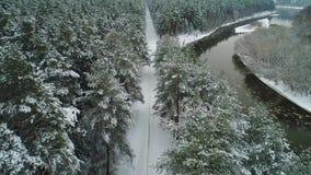 Vista aerea della foresta e del fiume di inverno archivi video