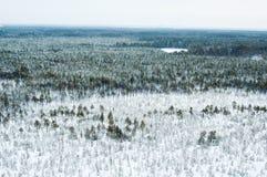 Vista aerea della foresta di inverno immagini stock libere da diritti
