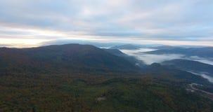 Vista aerea della foresta della montagna di autunno in nebbia video d archivio