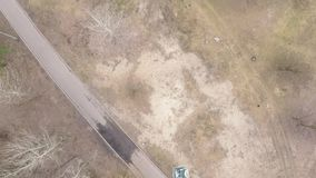 Vista aerea della foresta pino-decidua in molla in anticipo video d archivio