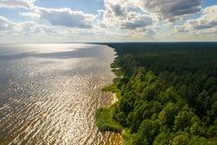 Vista aerea della linea costiera al giorno di estate Lago e foresta Fotografia Stock