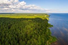 Vista aerea della linea costiera al giorno di estate Lago e foresta Fotografie Stock