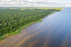 Vista aerea della linea costiera al giorno di estate Lago e foresta Immagini Stock
