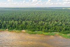 Vista aerea della linea costiera al giorno di estate Lago e foresta Fotografie Stock Libere da Diritti