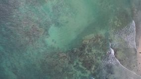 Vista aerea della spiaggia archivi video