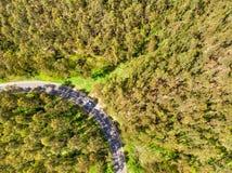 Vista aerea della strada e dell'automobile fra la foresta immagine stock