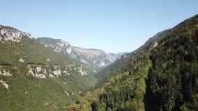 Vista aerea della valle pirenaica con la foresta dell'abete in Aude, Francia archivi video