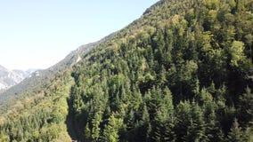 Vista aerea della valle pirenaica con la foresta dell'abete in Aude, Francia video d archivio