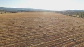 Vista aerea delle balle quadrate nel campo contro il sole video d archivio